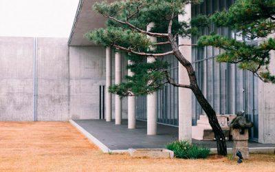 Jardines Zen. Relajación para los espacios comunes